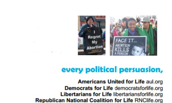 pro-life demographics politics