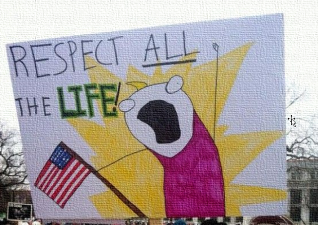 respect all the life